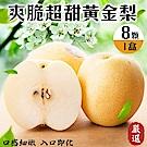 【天天果園】嚴選爽脆黃金梨禮盒1盒(每盒8顆/每顆約400g)