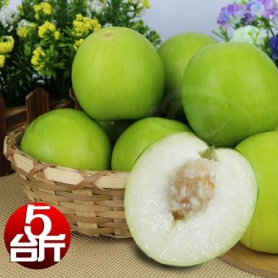 【果之家】燕巢特美產銷履歷L級網室牛奶蜜棗/金桃蜜棗5台斤(單顆約120g)
