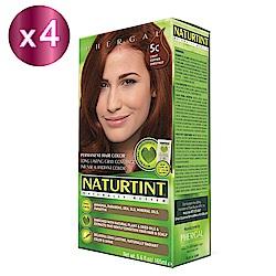 NATURTINT 赫本染髮劑 5C 銅褐色x4 (155ml/盒)