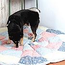 樂嫚妮 棉質地毯/饅頭墊/榻榻米墊/寵物墊 145X145cm