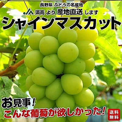 【天天果園】日本長野麝香葡萄1串(每串約350g)