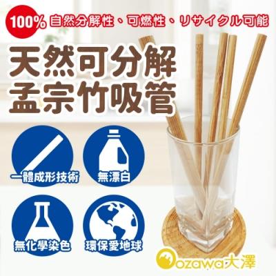 OZAWA大澤 天然可分解孟宗竹吸管 x100包(附清潔細刷)