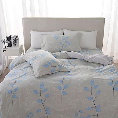 夢工場 優雅風情精梳棉床包兩用被組-加大