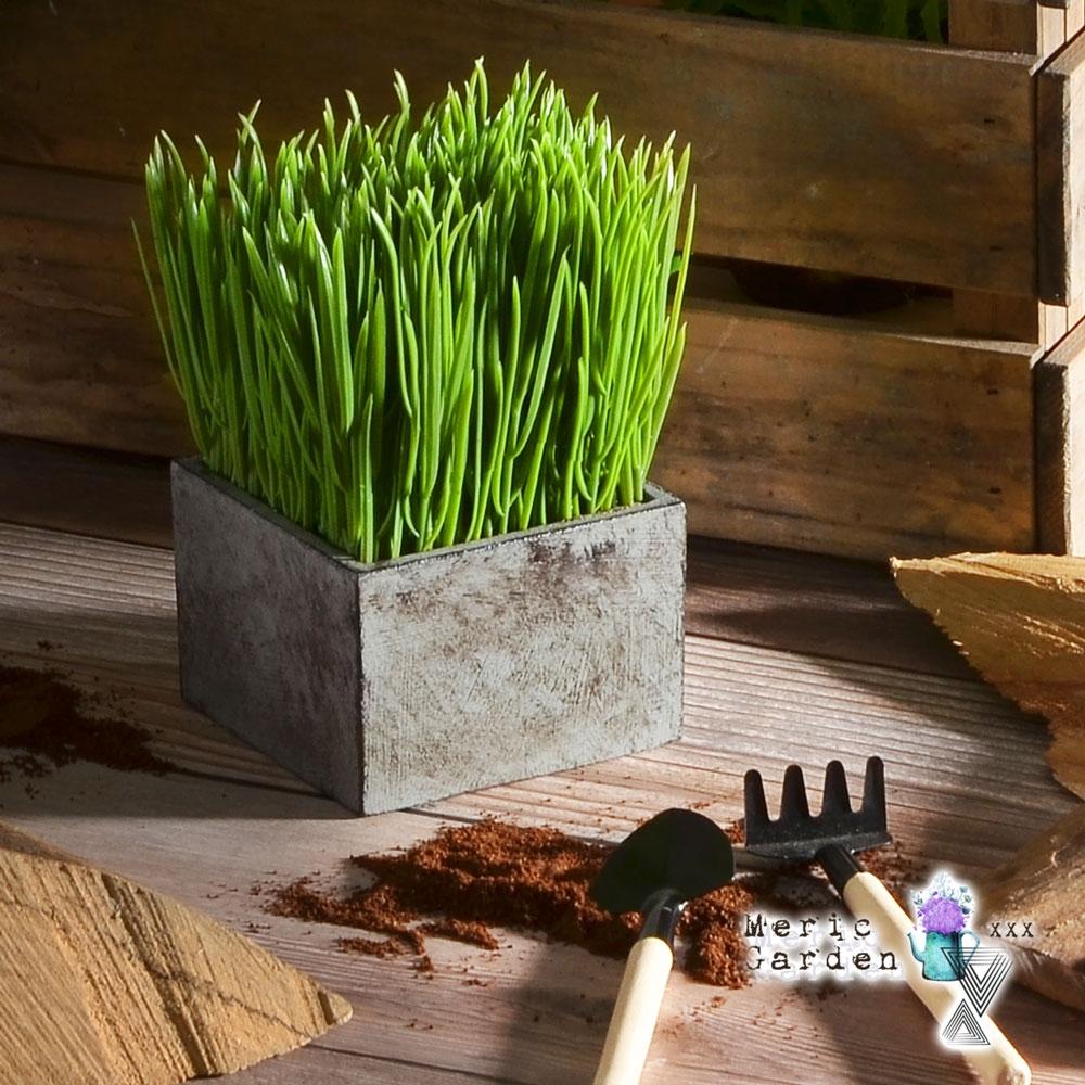 Meric Garden 創意北歐仿真大麥草方形復古水泥盆栽