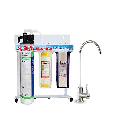 水蘋果公司貨 EVERPURE QL3-4HL 三道淨水器