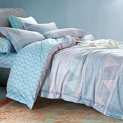 Ania Casa 隨風 原廠天絲 採用3M吸溼排汗專利 加大鋪棉兩用被床包組