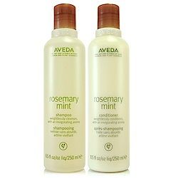 AVEDA 迷迭薄荷洗髮精250ml+迷迭薄荷日用潤髮乳250ml