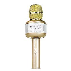 KINYO 雙聲喇叭行動KTV無線藍芽喇叭麥克風(BDM-500) 附贈炫光舞台燈
