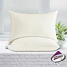 澳洲Simple Living 吸濕排汗獨立筒釋壓彈力枕-二入(台灣製)