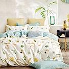 La Lune 台灣製40支精梳純棉雙人加大床包被套四件組 本草綱目北歐篇