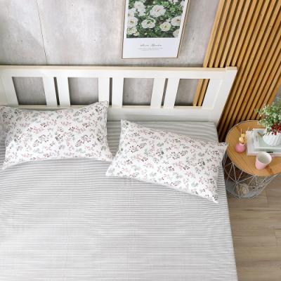 鴻宇 100%精梳棉 夏。茉莉 雙人床包枕套三件組