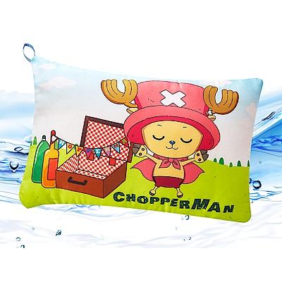 Saint Rose  卡通正版授權 天絲可水洗枕一入-航海王野餐趣