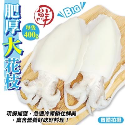 【海陸管家】特級鮮Q甜肥厚大花枝6隻(每隻約400g)