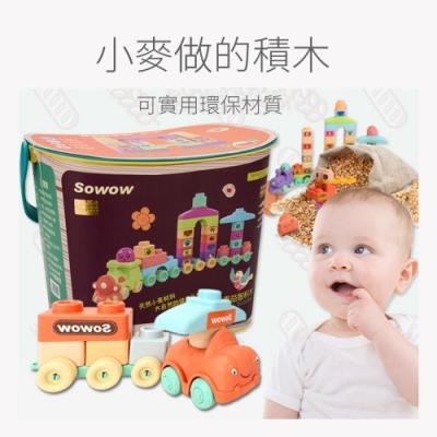 (積木城)兒童大積木100顆可啃咬早教玩具(36m+)