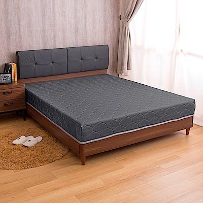 璐易絲系列 護背特仕款-歐式緹花抗菌硬式雙人加大6尺彈簧床墊
