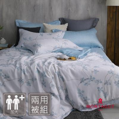 MONTAGUT-漫步鄂霍次克-200織紗萊賽爾纖維天絲-兩用被床包組(加大)