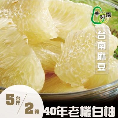 普明園‧台南麻豆40年大白柚5台斤/約2-3顆/箱,(共2箱)