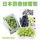 【天天果園】日本長野溫室麝香葡萄(每串500-580g) x1串禮盒