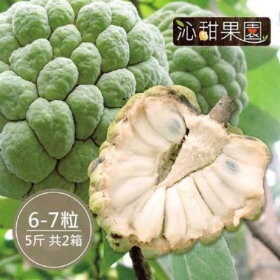 沁甜果園SSN‧台東大目釋迦(6-7顆裝/5台斤)(共2箱)
