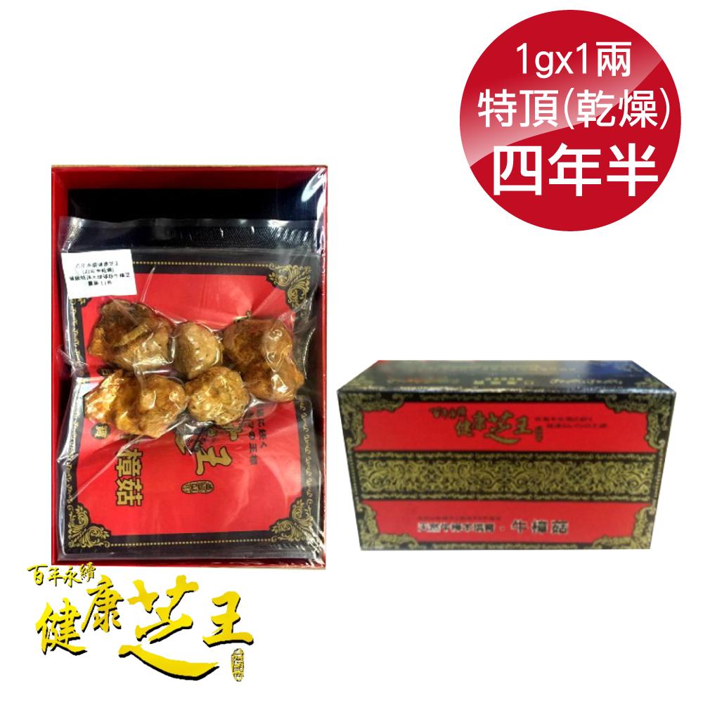 百年永續健康芝王 (四年半乾燥) 特頂大球菇牛樟芝/菇 乾燥品- 1g x1兩