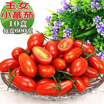 愛蜜果 溫室玉女小番茄10盒(600克/盒)