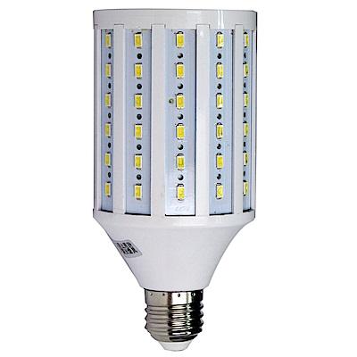 FotoOne標準色溫5500k 玉米造型LED攝影燈泡35w(一顆裝)