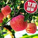 [甜露露]青森甜夢蘋果4入+梨山甘露梨4入禮盒