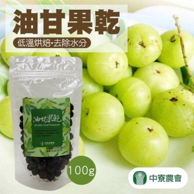 中寮農會 油甘果乾 (100g/包)