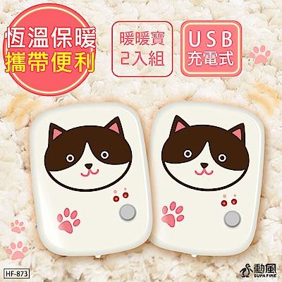 (2入組)勳風 貓咪怕冷/懷爐/暖暖寶/電暖蛋(HF-873) LED照明