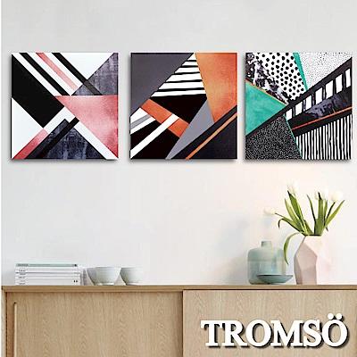 TROMSO 時尚無框畫-繽紛交響曲