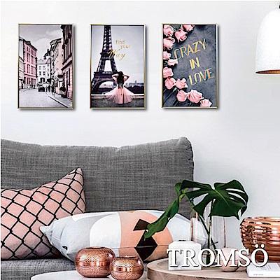 TROMSO 北歐生活版畫有框畫-粉紅巴黎WA96(三幅一組)