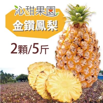 沁甜果園SSN‧金鑽鳳梨(2顆/5台斤)