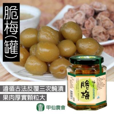 甲仙農會 脆梅 (200g / 罐 x3罐)