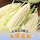 【愛上新鮮】北海道白龍王水果玉米4箱組(2.5公斤/箱/8支裝) product thumbnail 1