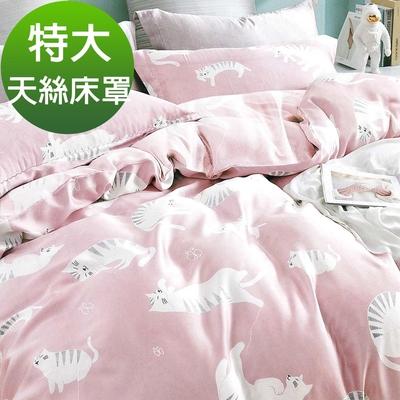 Saint Rose頂級精緻100%天絲床罩八件組(包覆高度35CM)-慵懶貓咪 特大