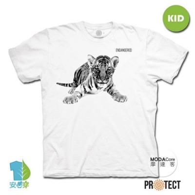 摩達客-預購-美國The Mountain保育系列小老虎 兒童幼兒 白色純棉短袖T恤