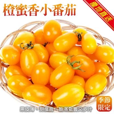 (買1送1)顧三頓-橙蜜香小番茄_共2箱(每箱5斤±10%)