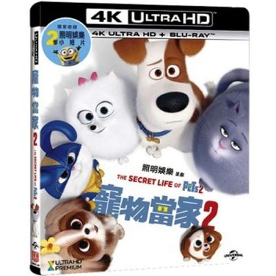 寵物當家2  4K UHD+BD 雙碟限定版
