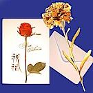 黃金康乃馨 金箔花禮品 (贈精美卡片)