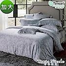 Tonia Nicole東妮寢飾 羅馬古都環保印染100%萊賽爾天絲被套床包組(加大)