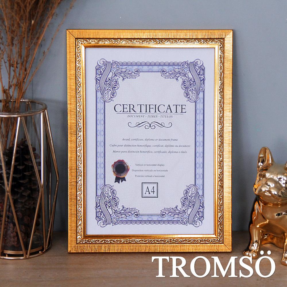 TROMSO 極致榮耀A4相框-T款