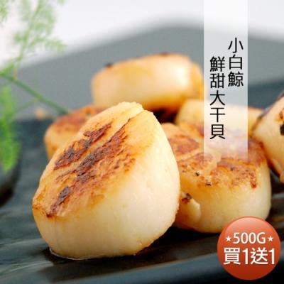 築地一番鮮-【買1送1】小白鯨鮮甜大干貝(500G/包)