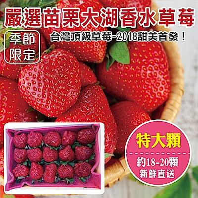 (滿799免運)【天天果園】嚴選苗栗大湖香水草莓(18-20顆/共約400g) x1盒