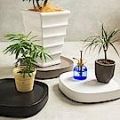 日本tidy 移動式盆栽托盤/盆栽架(小)