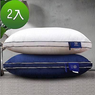 好康Hilton希爾頓五星級純棉立體銀離子抑菌獨立筒枕2入