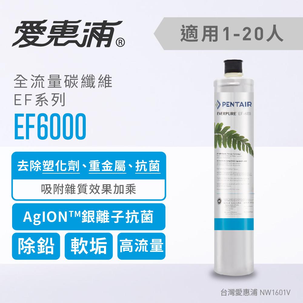 愛惠浦 全流量強效碳纖維系列濾芯 EVERPURE EF6000