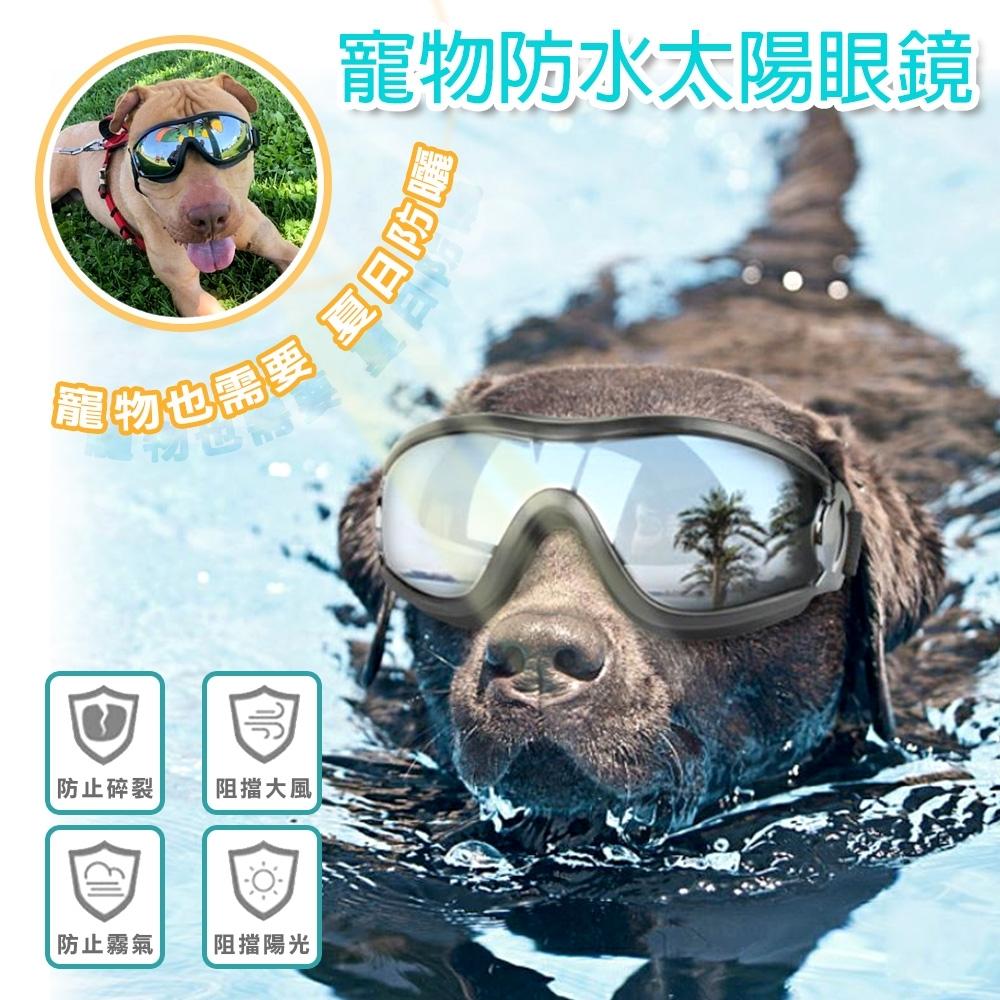 COMET 中大型犬拉風太陽眼鏡(DG-003)黑色