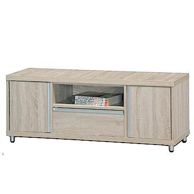 綠活居 皮莎4尺木紋二抽電視櫃/視聽櫃(二色可選)-120x40x48cm-免組
