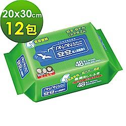 安安 成人柔護濕巾 加大型濕紙巾 (48抽x12包)