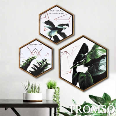 TROMSO北歐時代風尚六角有框畫-丹麥金綠葉WA161(三幅一組)